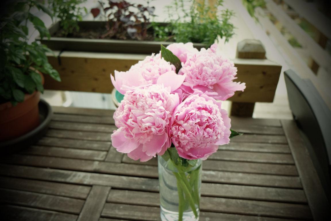 Un bouquet coloré pour une terrasse remarquée